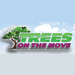 Photo Of Trees On The Move New Berlin Wi United States
