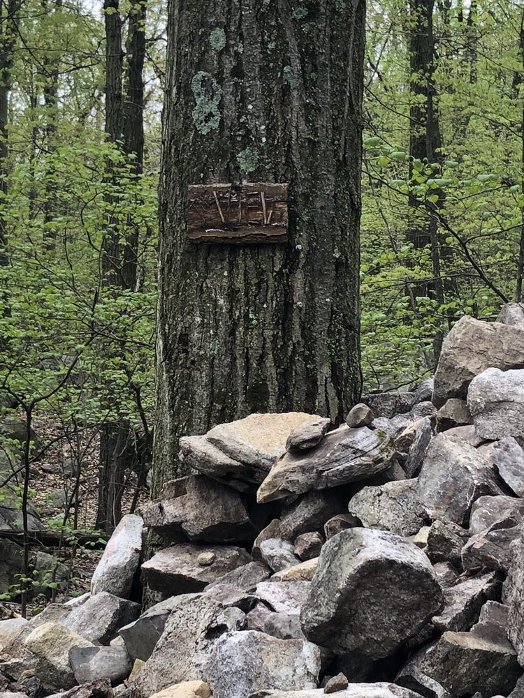 Stairway to Heaven: Pochuck Mountain To Wawayanda Mountain, Vernon Township, NJ