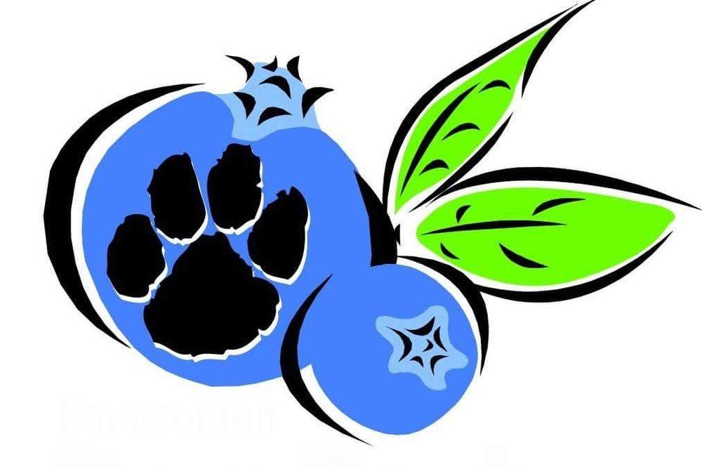 Hammonton Dog Park: 1137 Moss Mill Rd, Hammonton, NJ