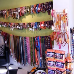 Photo Of Wag Nation   Newport, RI, United States. Collars And Leashes