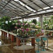 ... Photo Of Cedar Grove Garden Center   Cedar Grove, NJ, United States ...