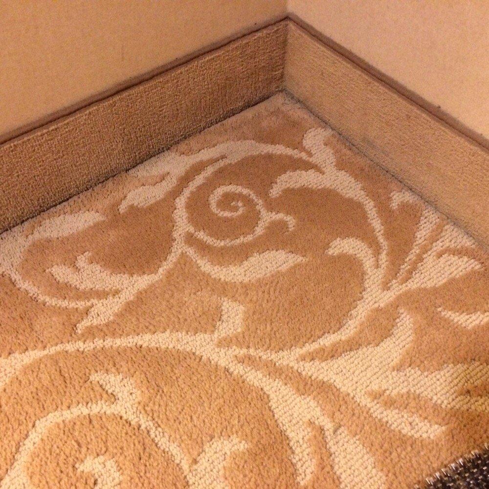 The Carpet Repairman