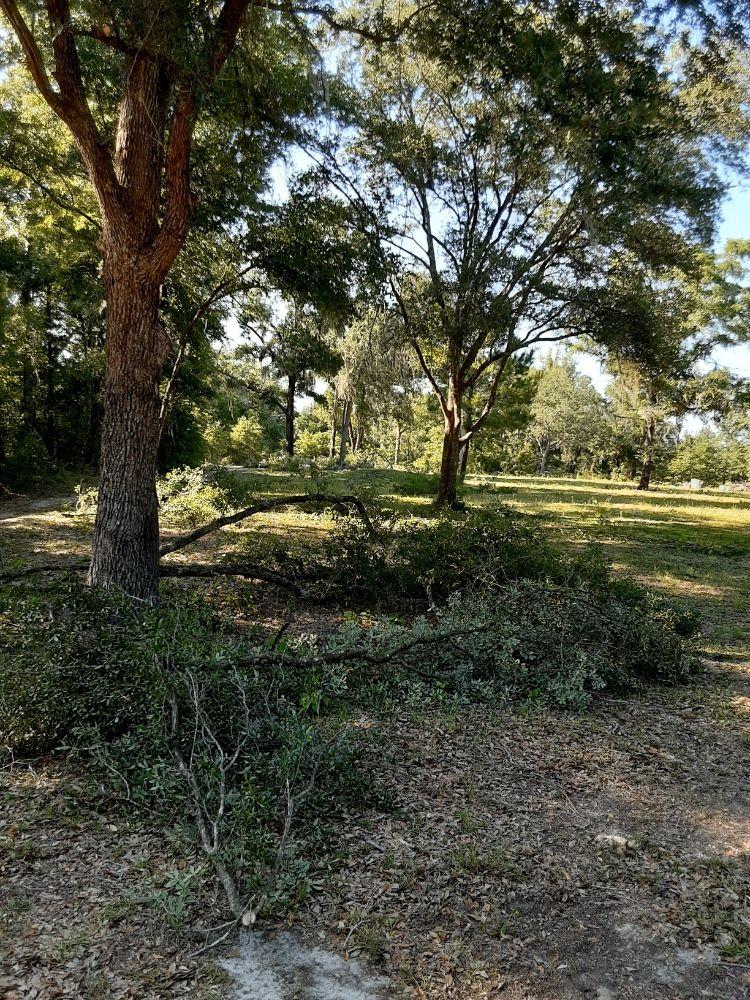 Edwards Lawncare And More: Trenton, FL
