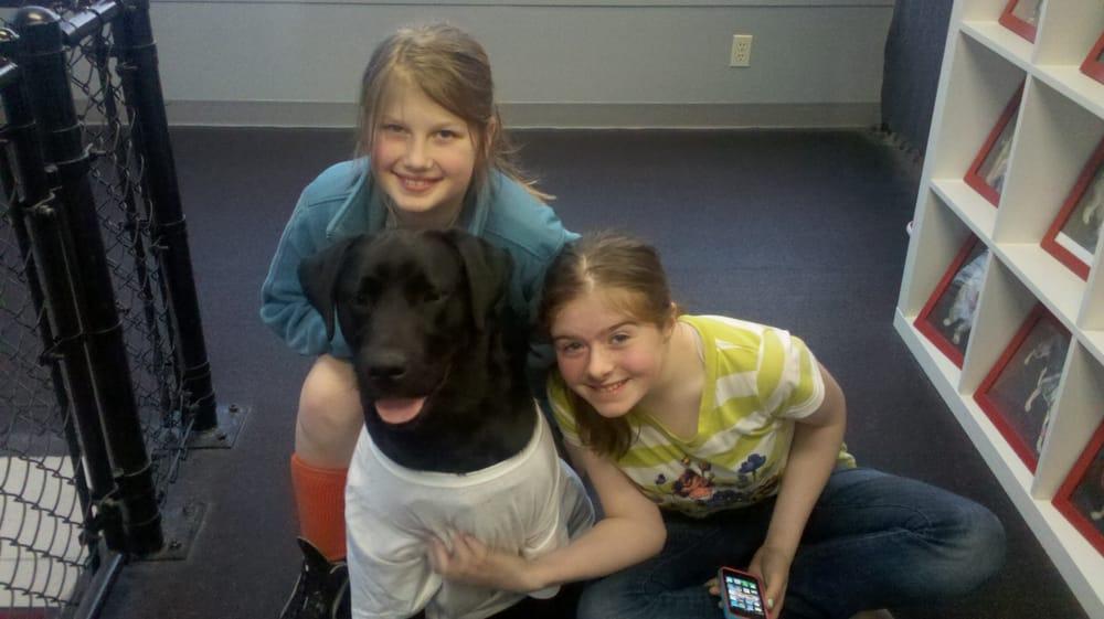 Pawlogic Dog Training