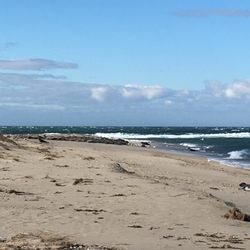 Photo Of Great Point Lighthouse Nantucket Ma United States More Seals