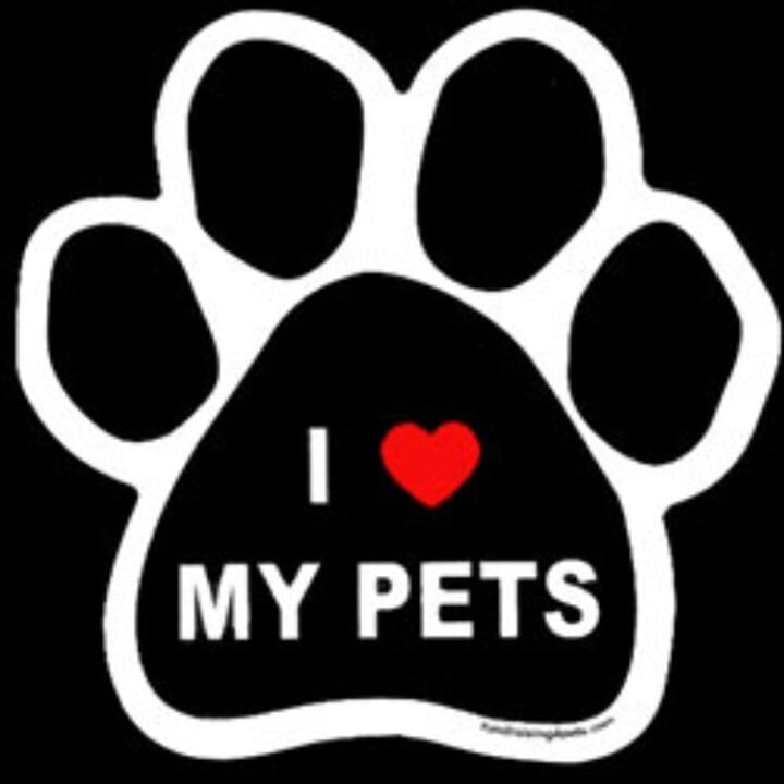 Techsitters Pet Sitting and Vet Tech Care