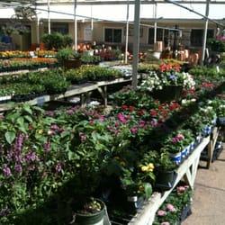 Attractive Photo Of North Haven Gardens Center   Dallas, TX, United States