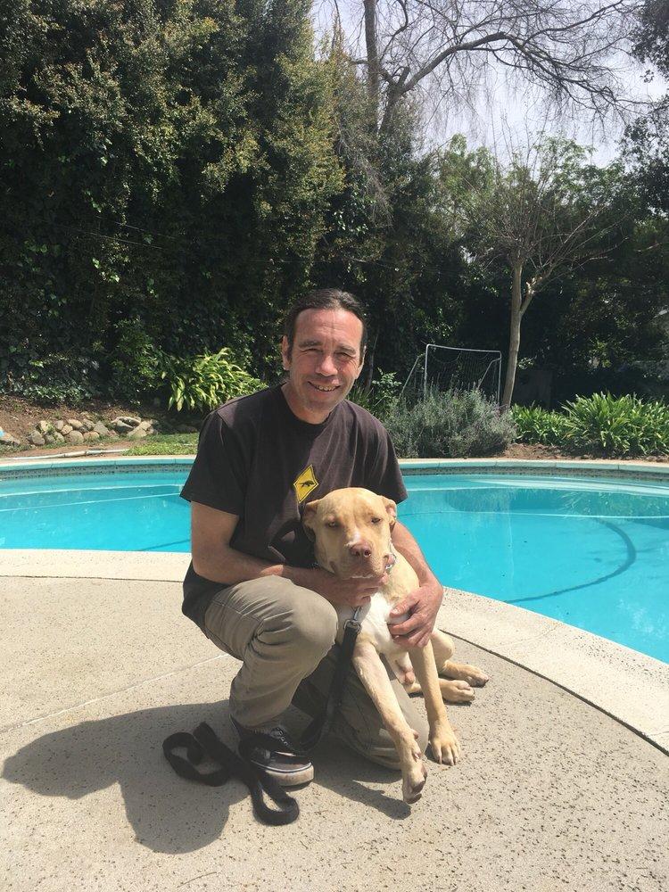 In Home Dog Training: 672 E Palm St, Altadena, CA