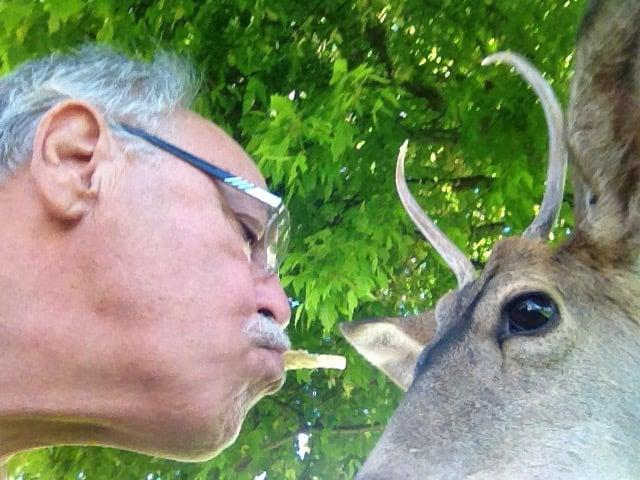 Jeffrey Tribble, DVM - Brookings Harbor Veterinary Hospital | 15630 Highway 101 S, Brookings, OR, 97415 | +1 (541) 469-7788