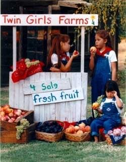 Twin Girls Farm: 10537 Boone Dr, Dinuba, CA