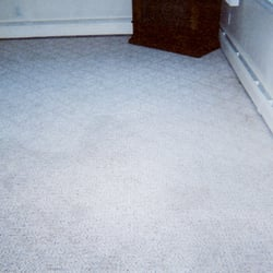 Professional Carpet Systems 44 Photos Carpet Cleaning