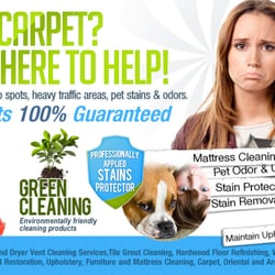 Carpet cleaning greenburgh ny furniture reupholstery 62 quail close irvington ny united - Often clean carpets keep best state ...
