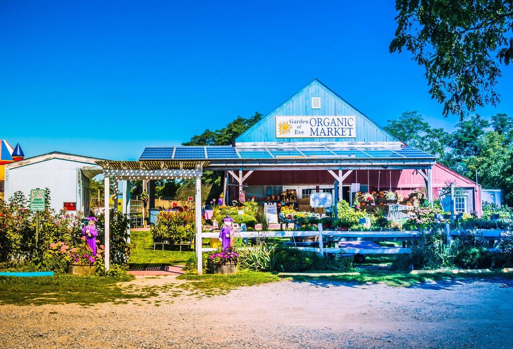 Garden of Eve Organic Farm: 4558 Sound Ave, Riverhead, NY