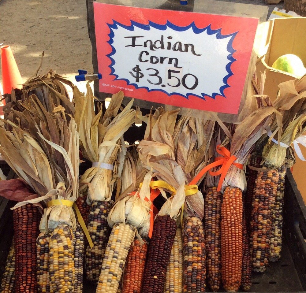 Flagler Beach Farmer's Market: SR 100 & South Central Ave, Flagler Beach, FL