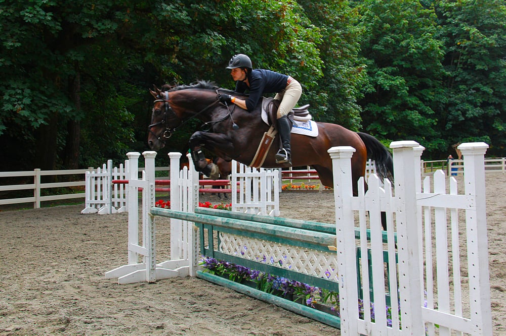 Hubbard Equine: 10408 Grandview Rd, Arlington, WA