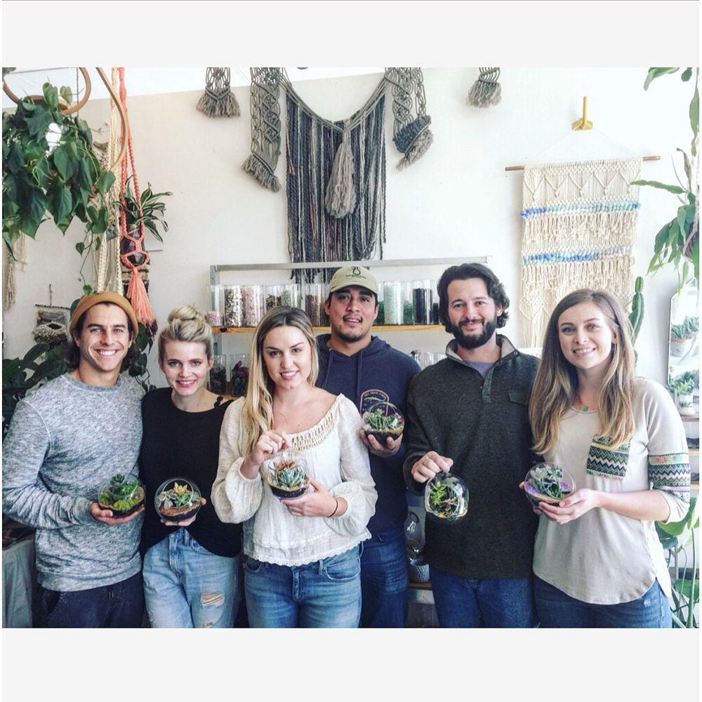 Plant Party