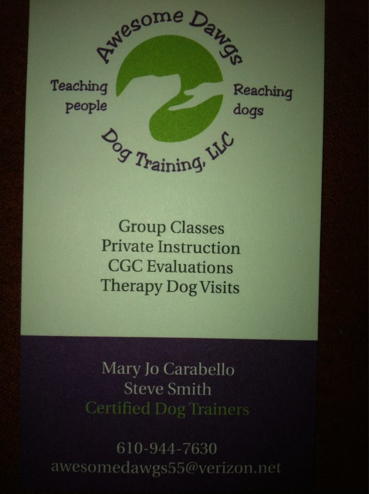 Awesome Dawgs Dog Training: 3052 Pricetown Rd, Temple, PA