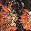Wicker's Crab Pot: 4201 Indian River Rd, Chesapeake, VA