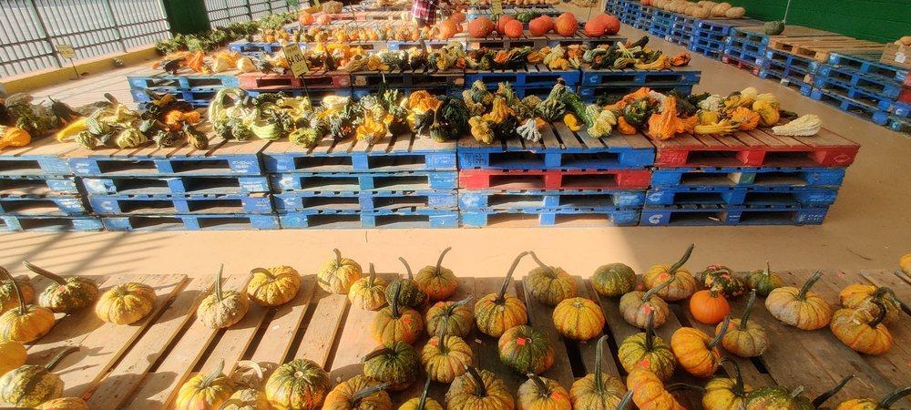 Produce Junction: 260 N Pottstown Pike, Exton, PA
