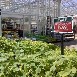 Petitti garden centers strongsville oh yelp - Petitti garden center strongsville ...