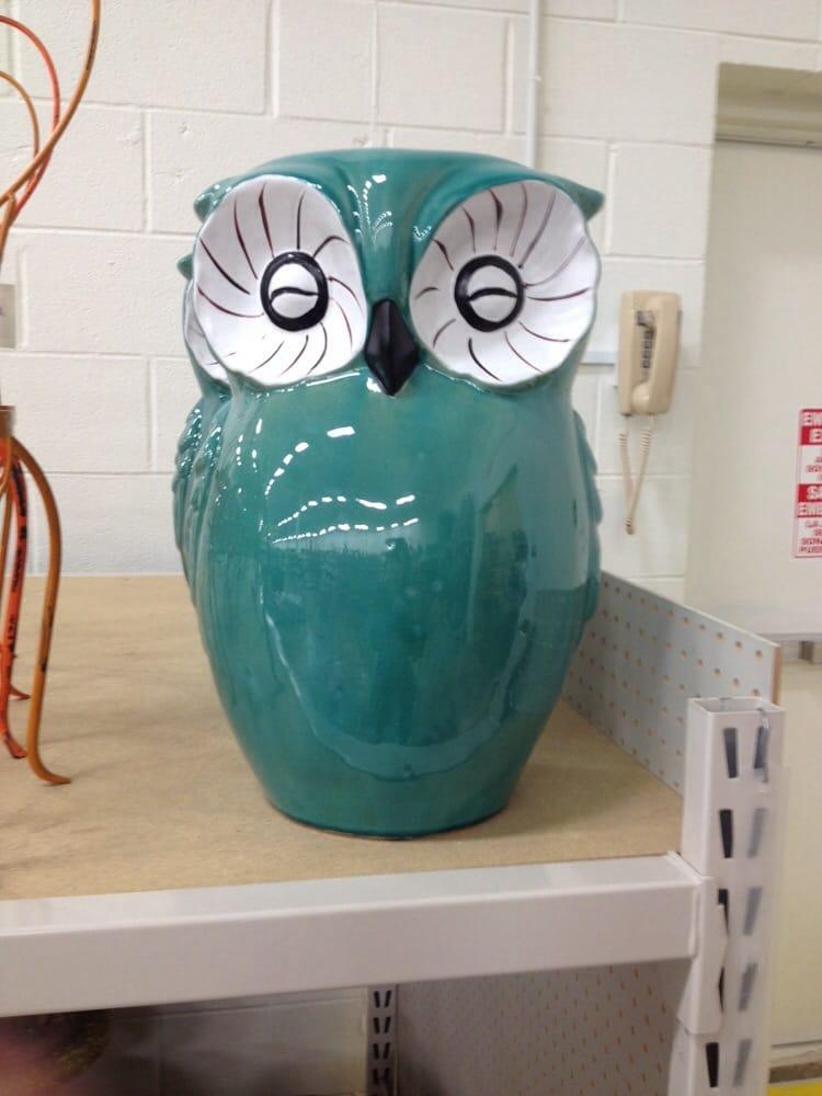 Owl Stool Yelp