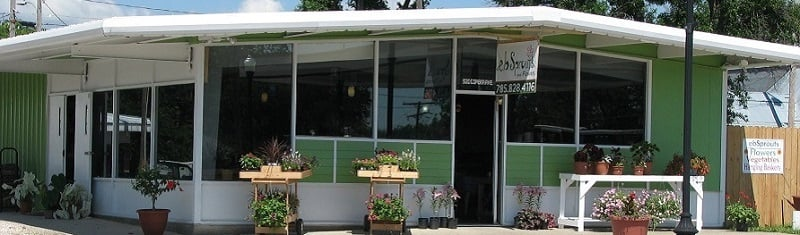 E B Sprouts and Flowers: 520 Topeka Ave, Lyndon, KS