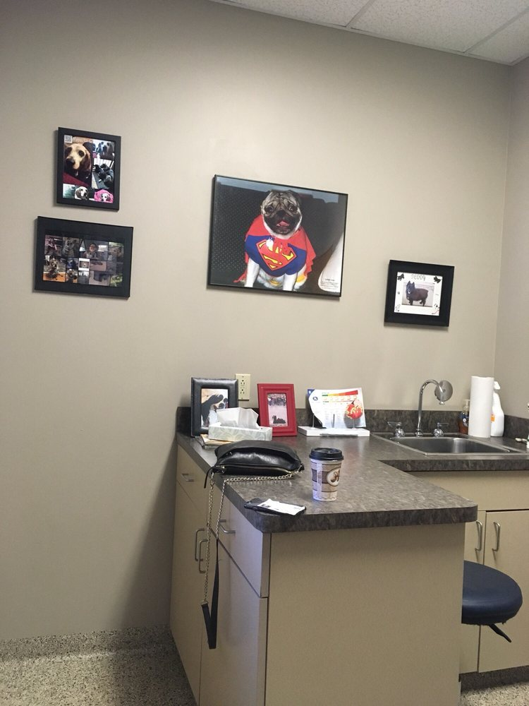 Veterinary Specialty Services: 1021 Howard George Dr, Ballwin, MO