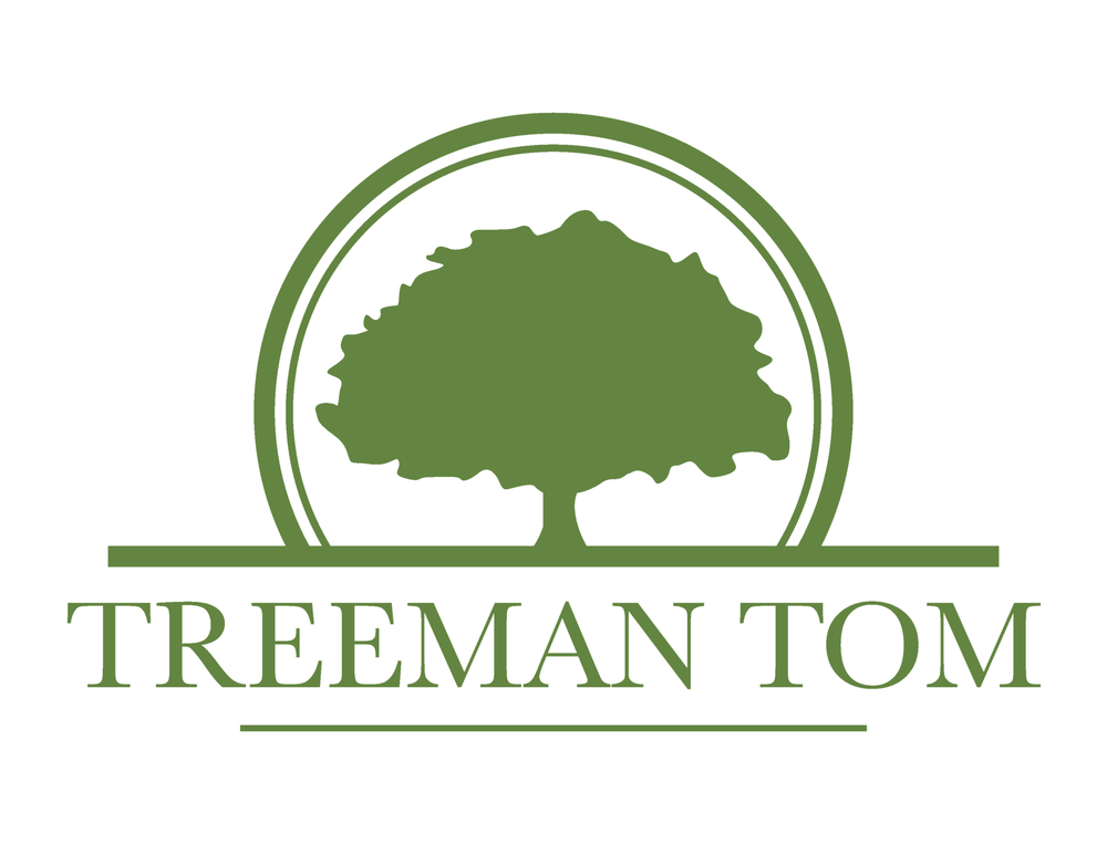 Treeman Tom and Consulting: 1879 Pallister Ave, Barker, NY