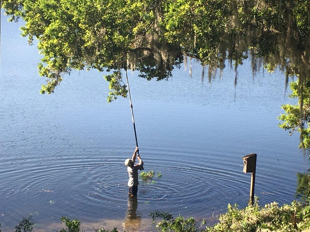 A Cut Above Tree & Landscape: 114 E 7th St, Chuluota, FL