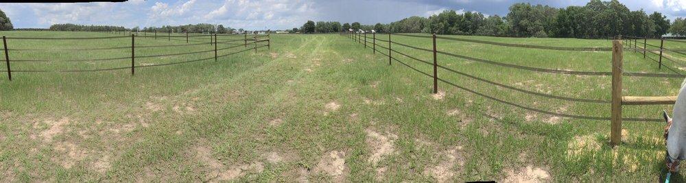 Wind Song Equestrain Farm: 2020 Haas Rd, Apopka, FL