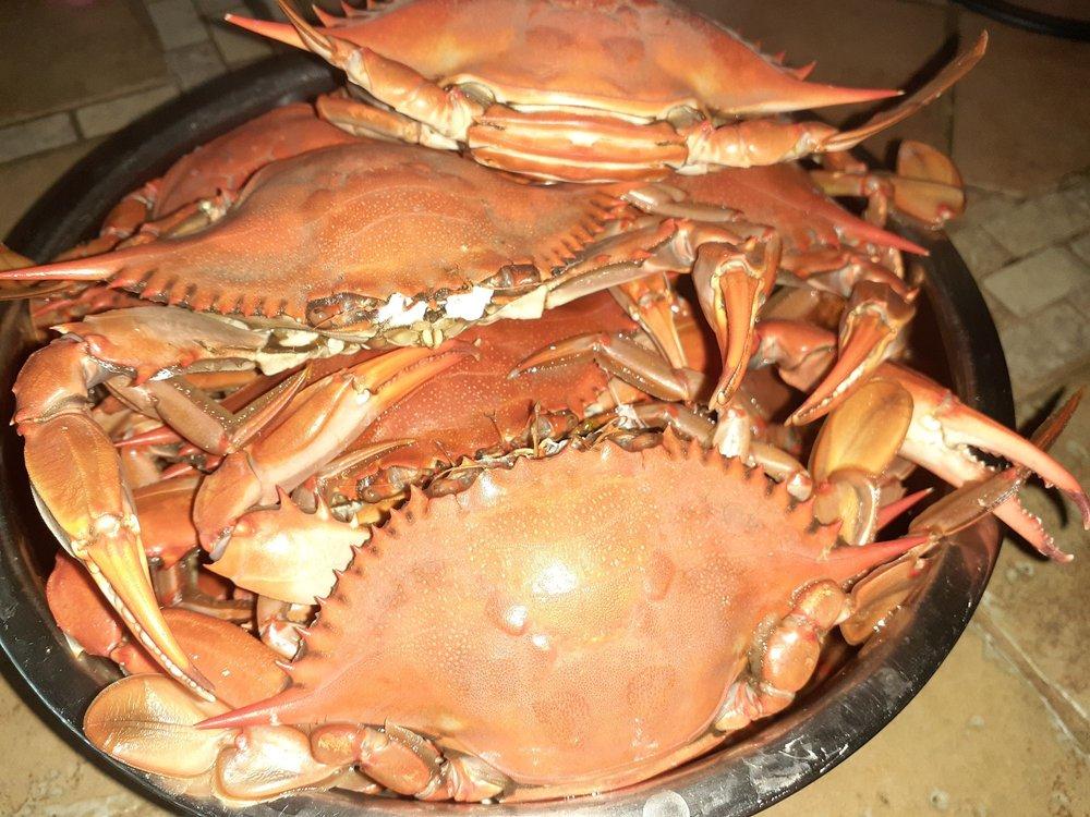 Barnhill Seafood Market & More: 4573 Pine Island Rd NW, Matlacha, FL