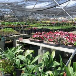 Perfect Photo Of Torrance Wholesale Nursery   Torrance, CA, United States ...