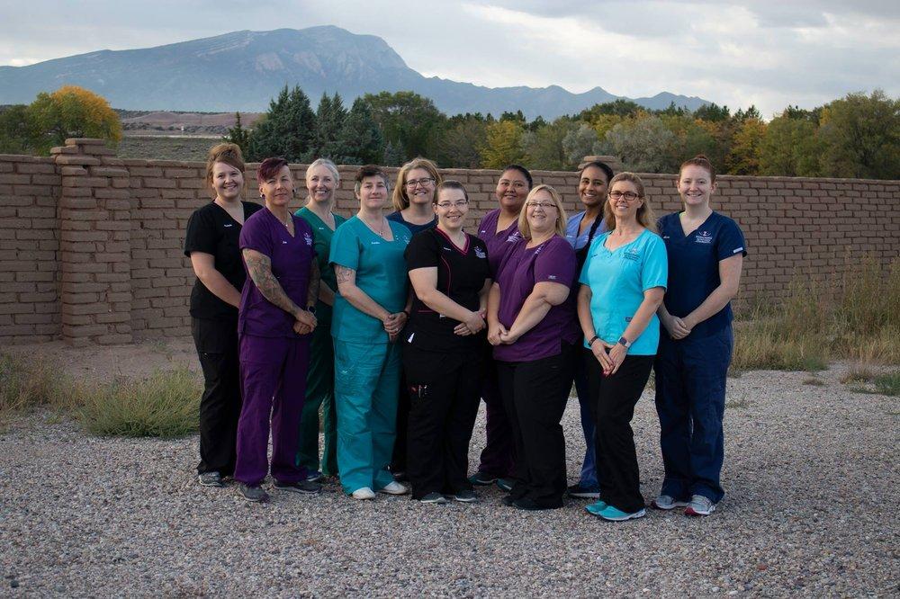 Veterinary Dentistry and Oral Surgery: 5 Camino Karsten, Algodones, NM