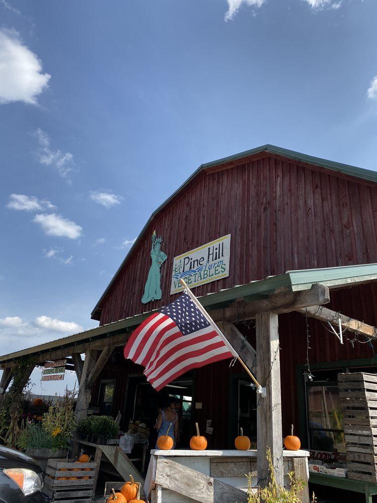 Pine Hill Farm: 3298 Rte 94, Chester, NY