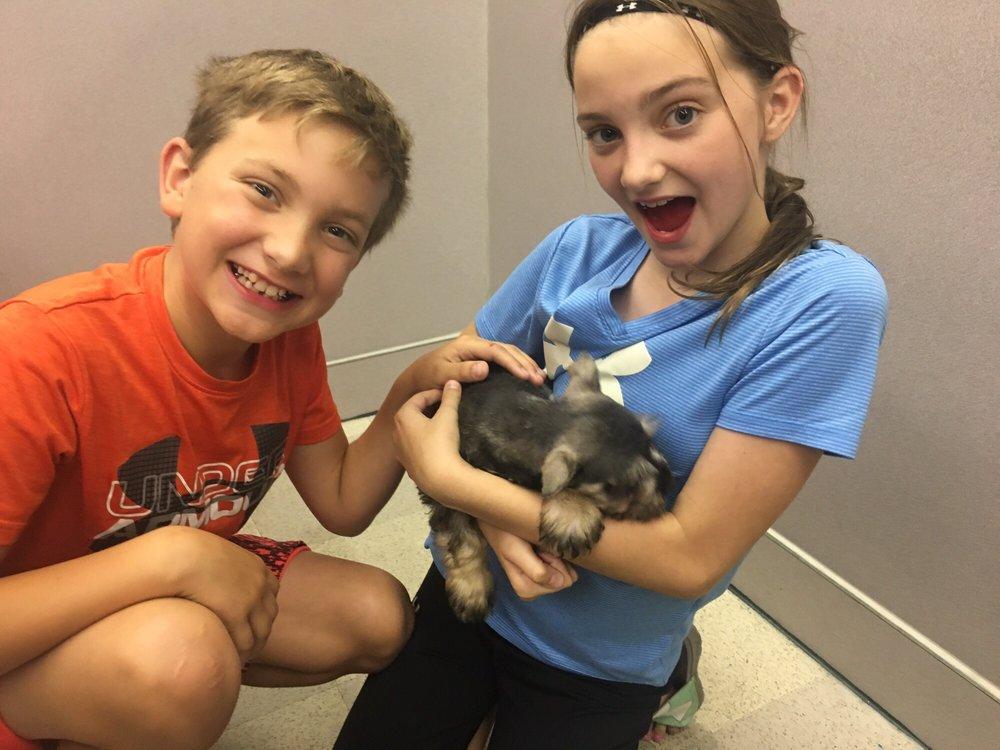 Petland Wichita - 24 Photos & 11 Reviews - Pet Stores
