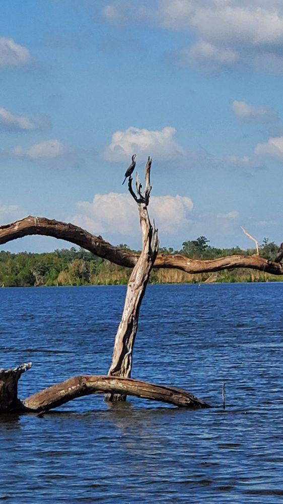 2 Da Swamp: 4298 Hwy 90, Des Allemands, LA