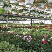 Superb ... Photo Of Cedar Grove Garden Center   Cedar Grove, NJ, United States ...