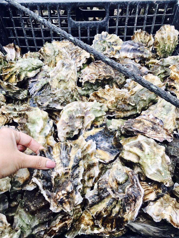 Minterbrook Oyster: 12002 114th Street Court Kp N, Gig Harbor, WA