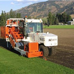 Photo Of Lavington Turf Farms Coldstream Bc Canada
