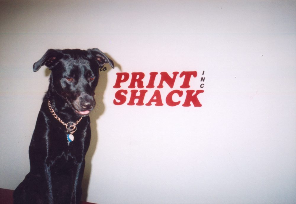 Print Shack: 9203 Brickyard Rd, Seaford, DE