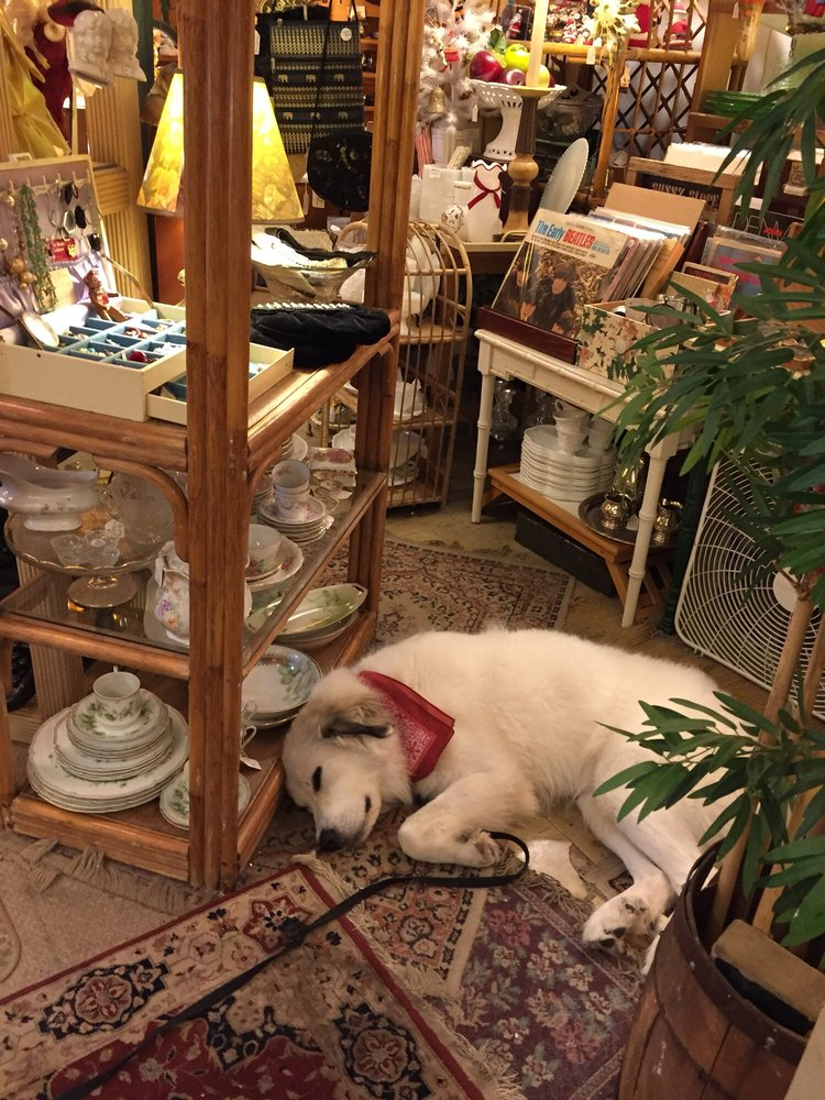 The Mother Load Antiques and Collectibles