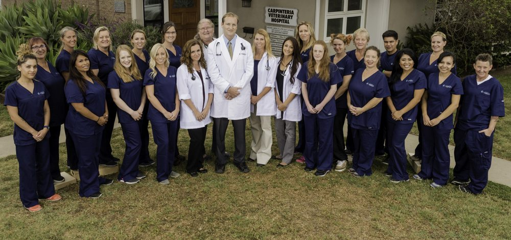 Carpinteria Veterinary Hospital: 585 Walnut Ave, Carpinteria, CA