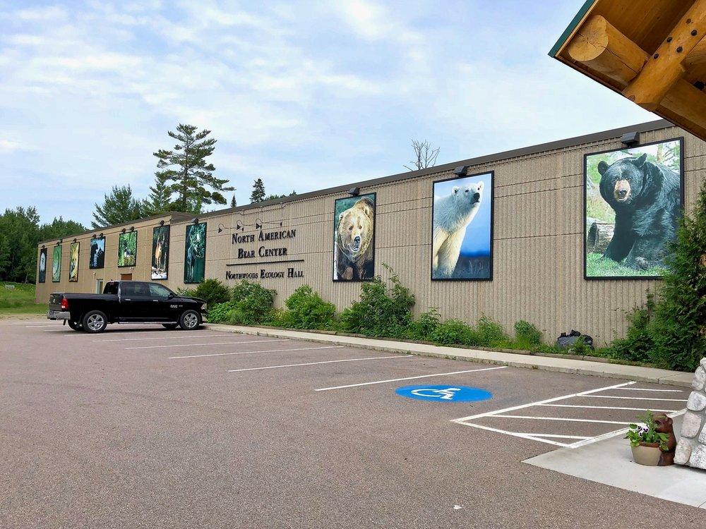 North American Bear Center: 1926 Hwy 169, Ely, MN