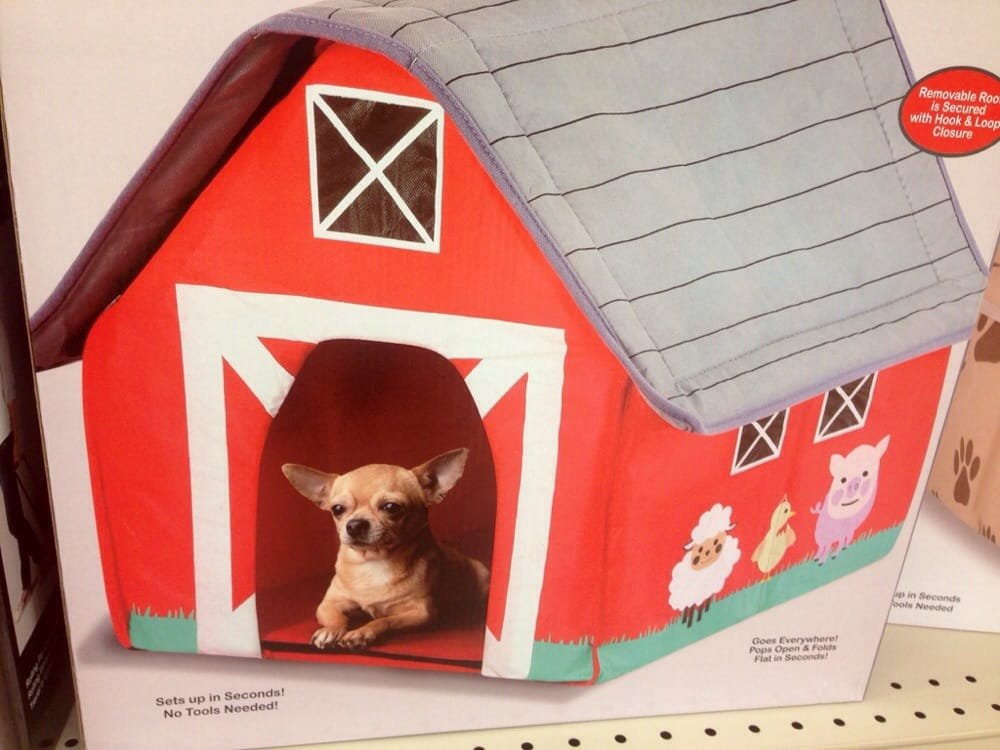 Odd inflatable pet barn - My chihuahua would not have a thing to ...