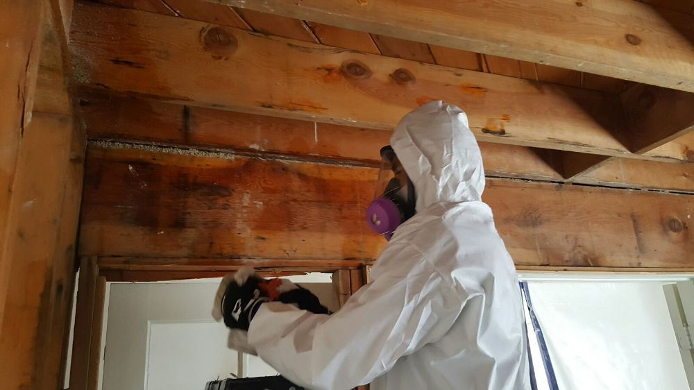 Affordable Asbestos Removal & Abatement