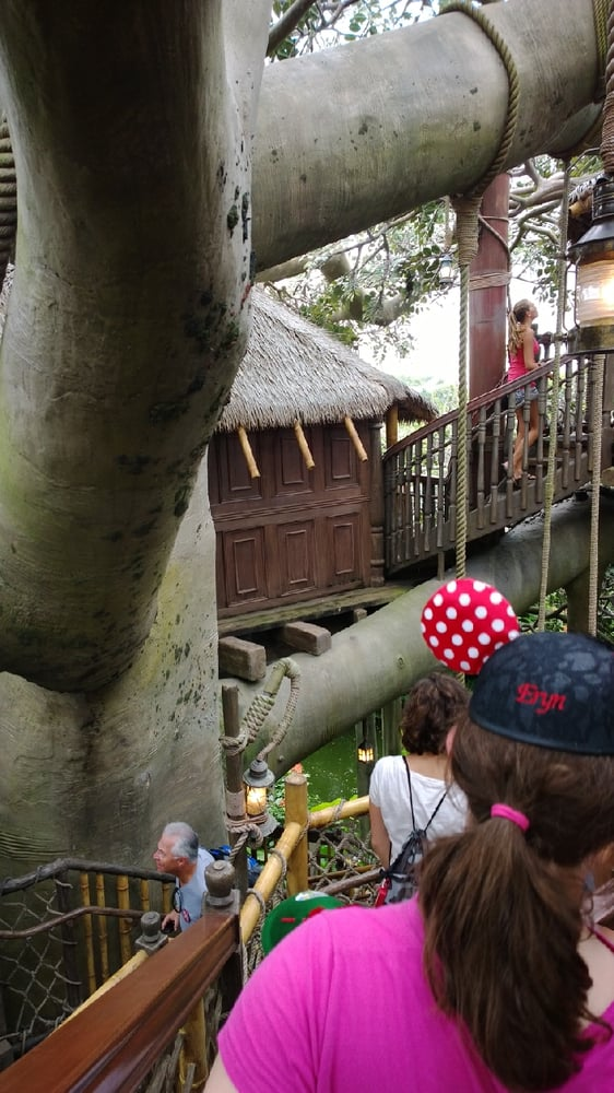 swiss family treehouse    reviews amusement parks  caribbean  disney