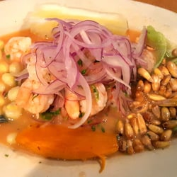 Top 10 Best Seafood Restaurants Downtown In Tampa Fl Last