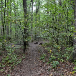 ohiopyle hindu singles Near ohiopyle, pennsylvania sign up  open the hiking project app and you'll find this trail on top of your  the northern half is a single hill of 400 feet that.