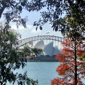 Photo Of Royal Botanic Gardens   Sydney New South Wales, Australia. Opera  House Framed