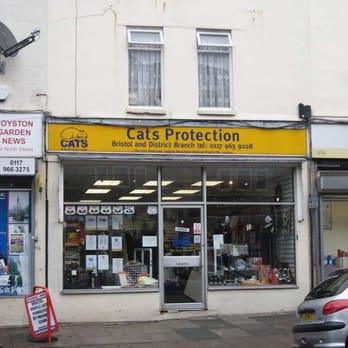 Cats Protection League Shop Bristol